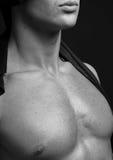 Portret gorący model fotografia royalty free