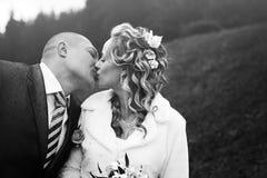 Portret, huwelijk Stock Foto's