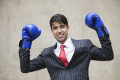 Portret indianina biznesmena odświętności zwycięstwo podczas gdy będący ubranym błękitne bokserskie rękawiczki przeciw szaremu tłu Fotografia Royalty Free