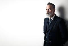 Portret jest ubranym modnego kostium brodaty dżentelmen Zdjęcia Royalty Free