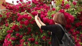 Portret Kaukaska kobieta z brać selfie w ogródzie różanym zdjęcie wideo