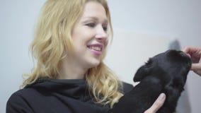 Portret kobieta wręcza trzymać małego psiego mopsa na rękach podczas gdy kobieta wręcza karmieniu on zamknięty w górę Zwierzęcy t zbiory