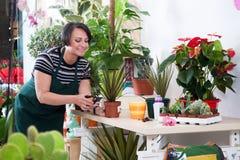 Portret kobiety kwiaciarnia w fartuchu i narzędziu w kwiatu sklepie Zdjęcie Stock