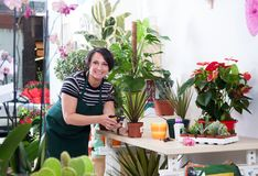 Portret kobiety kwiaciarnia w fartuchu i narzędziu w kwiatu sklepie Zdjęcia Stock
