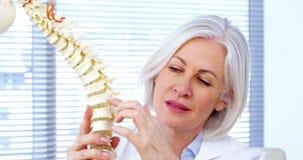 Portret kobiety lekarki mienia kręgosłupa model zdjęcie wideo