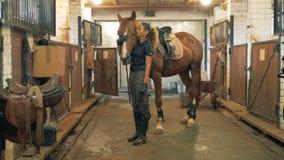Portret kobiety stojaki w stajence z koniem, klepie mnie 4K zdjęcie wideo