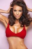Portret kusicielska brunetki dama fotografia stock