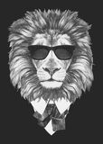 Portret lew w kostiumu Zdjęcia Stock