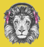 Portret lew z hełmofonami Obraz Royalty Free