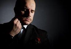 Portret mężczyzna. Fotografia Stock