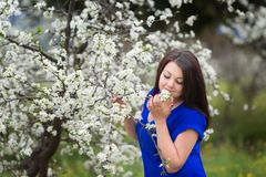 Portret młoda kobieta trzyma śniadanio-lunch kwitnąć śliwkowego drzewa w ogródzie, szczęśliwie ono uśmiecha się, wąchający kwiaty zdjęcia stock