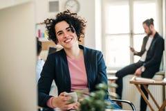 Portret młody bizneswoman z kolegami w nowożytnym biurze zdjęcie stock