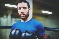 Portret Młody boksu mężczyzna patrzeje agresywny z bokserskimi rękawiczkami na pierścionku Kaukaska atleta patrzeje w czarnych rę Fotografia Royalty Free