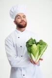 Portret męska szefa kuchni kucharza mienia kapusta Zdjęcie Stock