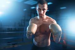 Portret mięśniowy bokser w czarnych rękawiczkach zdjęcie royalty free