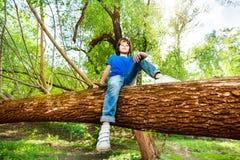 Portret młody chłopiec obsiadanie na spadać drzewnym bagażniku Obrazy Stock