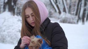 Portret nastoletnia dziewczyna trzyma Yorkshire teriera zawijający w błękitnej koc na rękach w zima śnieżystym parku A zbiory wideo