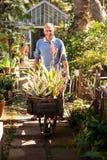 Portret ogrodniczki dosunięcia wheelbarrow w ogródzie Zdjęcia Stock