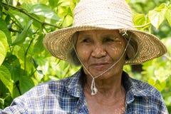 Portret Oude Aziatische Vrouwen royalty-vrije stock afbeelding