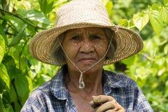 Portret Oude Aziatische Vrouwen stock fotografie