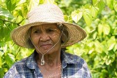 Portret Oude Aziatische Vrouwen royalty-vrije stock afbeeldingen