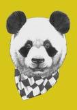 Portret panda z szalikiem ilustracji