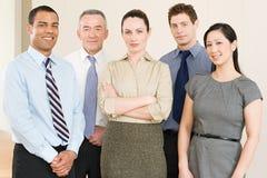Portret pięć biznesowych kolegów zdjęcia royalty free