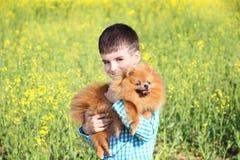 Portret, piękna chłopiec i jego pomeranian pies w żółtym polu Fotografia Royalty Free