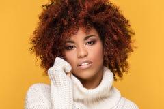 Portret piękna kobieta z afro fryzurą Fotografia Royalty Free