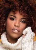 Portret piękna kobieta z afro fryzurą Obraz Stock