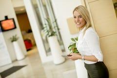 Portret piękna młoda bizneswoman pozycja w offi zdjęcie stock