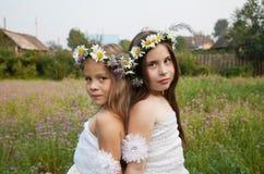 Portret piękna młoda dziewczyna jest ubranym koronę rumianki Zdjęcie Royalty Free