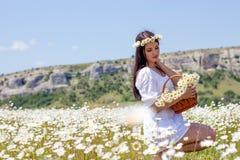 Portret piękna młoda kobieta w chamomile polu Szczęśliwej dziewczyny zbierackie stokrotki Dziewczyna odpoczywa w polu chamomile S Zdjęcia Royalty Free
