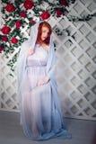 Portret piękna miedzianowłosa zielonooka dziewczyna Fotografia Stock