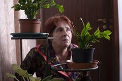 Portret piękna stara kobieta w domu fotografia stock