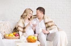 Portret piękni potomstwa dobiera się w domu, ciężarna dziewczyna ma śniadanie zakrywa szkocką kratę Obraz Stock