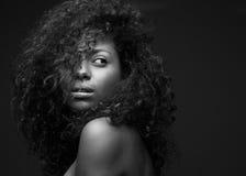 Portret piękny amerykanin afrykańskiego pochodzenia mody model Fotografia Stock