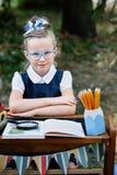 Portret piękny młody równiarki obsiadanie przy biurkiem Zdjęcie Stock