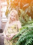 Portret pozuje w szklarni piękna kobieta w ciąży zdjęcia stock