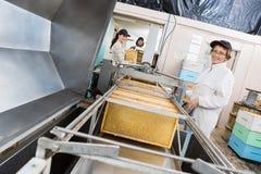 Portret Pracuje Na Miodowej ekstrakci pszczelarka Zdjęcia Stock