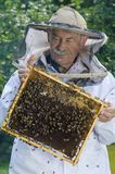 Portret pszczelarka z honeycomb Fotografia Royalty Free