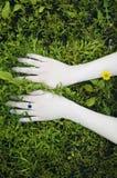 Portret ręki na tle kwiaty Kwiaty, dają, oferują, Zdjęcie Stock