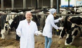 Portret robotnicy rolni w cowhouse Obrazy Royalty Free