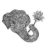 Portret słoń z lotosowym kwiatem w azjata stylu Mandala wzór dla dorosłej kolorystyki książki Wektorowy czarny i royalty ilustracja