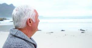 Portret starszego mężczyzna pozycja na plaży zbiory wideo