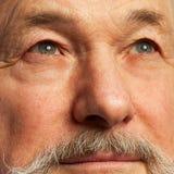 Portret stary człowiek z brodą Fotografia Royalty Free