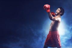 Portret szczęście boksera azjatykci mężczyzna Obraz Royalty Free