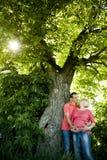 Portret szczęśliwa ciężarna para pod dokrętki drzewem. Obrazy Stock