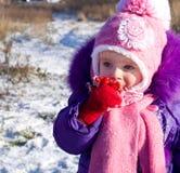 Portret szczęśliwa mała dziewczynka w śnieżnym krajobrazie obrazy stock