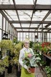 Portret szczęśliwa ogrodniczki mienia garnka roślina w szklarni Zdjęcia Stock
